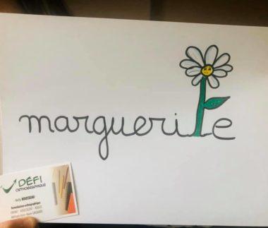 ORTHOGRAPHE ILLUSTREE marguerite